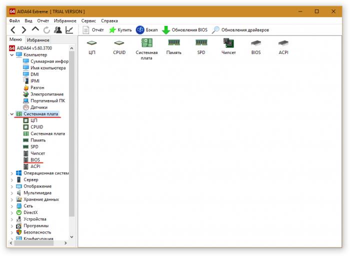 версия BIOS в программе AIDA64