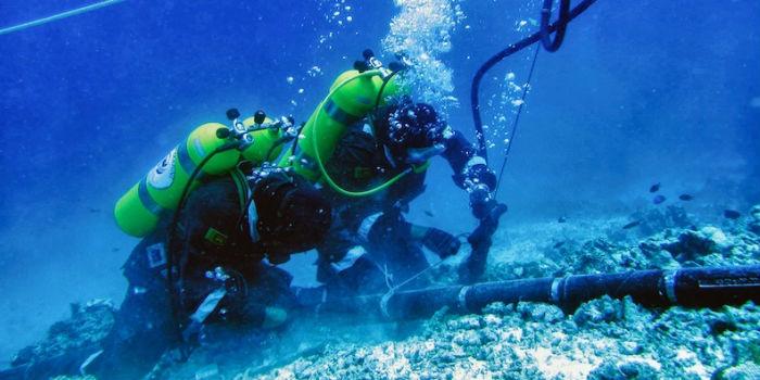 Google ввела в эксплуатацию новый 8850-километровый подводный кабель из США в Японию