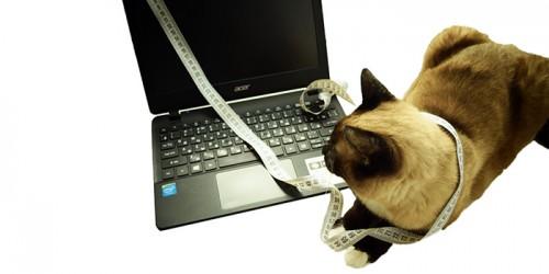 Как узнать размер экрана ноутбука